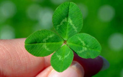 Lucky, Lucky You: Getting Ready for Lucky Breaks